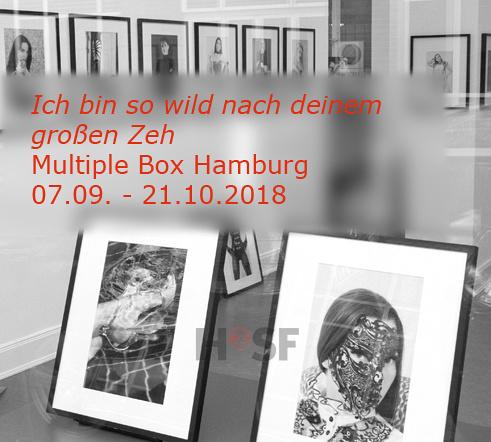 Multiple Box2018 Icon